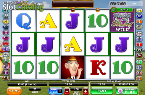 Screen13. Nags to Riches (Video Slot from Ash Gaming)