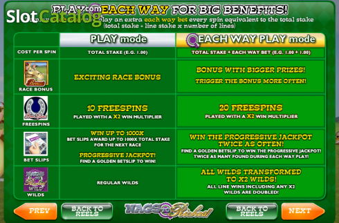 Screen2. Nags to Riches (Video Slot from Ash Gaming)