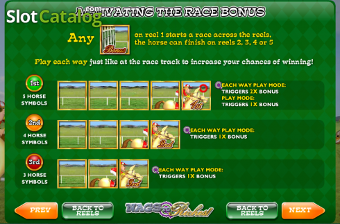Screen3. Nags to Riches (Video Slot from Ash Gaming)