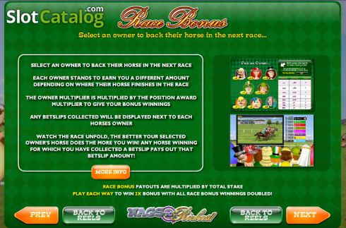 Screen4. Nags to Riches (Video Slot from Ash Gaming)