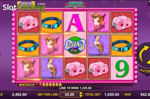 Game workflow . Doggone Lucky (Video Slot from Aspect Gaming)
