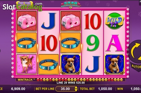 Game workflow 2. Doggone Lucky (Video Slot from Aspect Gaming)