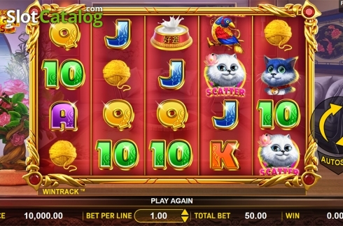 Reels screen. Hungry Cats (Video Slot from Aspect Gaming)