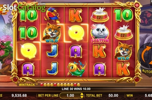 Win screen 2. Hungry Cats (Video Slot from Aspect Gaming)
