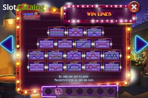 Paylines. Blackjack Cats (Video Slot from Asylum Labs Inc.)