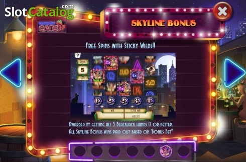 Features 4. Blackjack Cats (Video Slot from Asylum Labs Inc.)