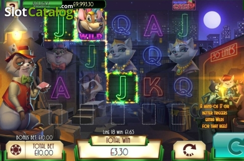 Win Screen 1. Blackjack Cats (Video Slot from Asylum Labs Inc.)