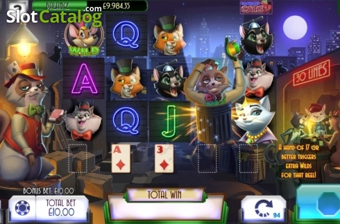 Feature. Blackjack Cats (Video Slot from Asylum Labs Inc.)