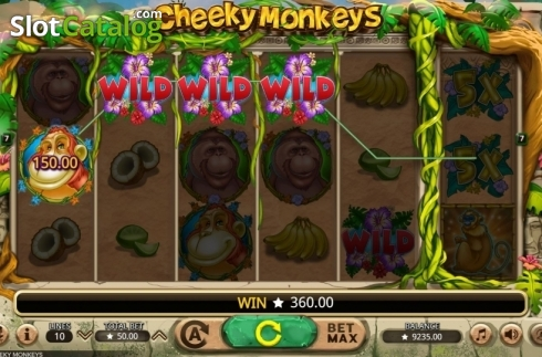 Win Screen. Cheeky Monkeys (Video Slot from Booming Games)