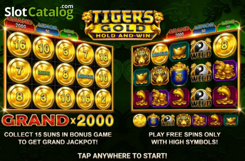 Skjerm2. Tiger's Gold Hold and Win (Video Slot fra Booongo)