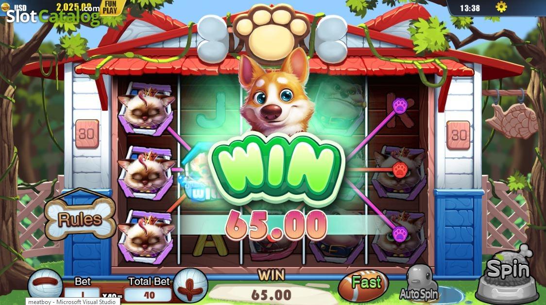 Spiele Pet House - Video Slots Online