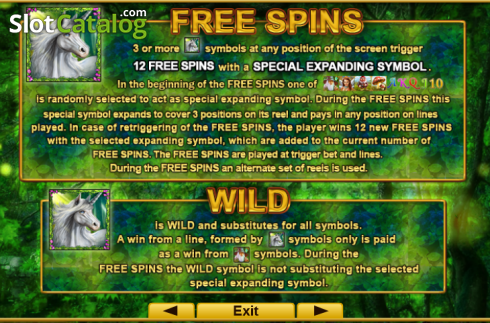 Screen3. Fortune Spells (Video Slot from EGT)