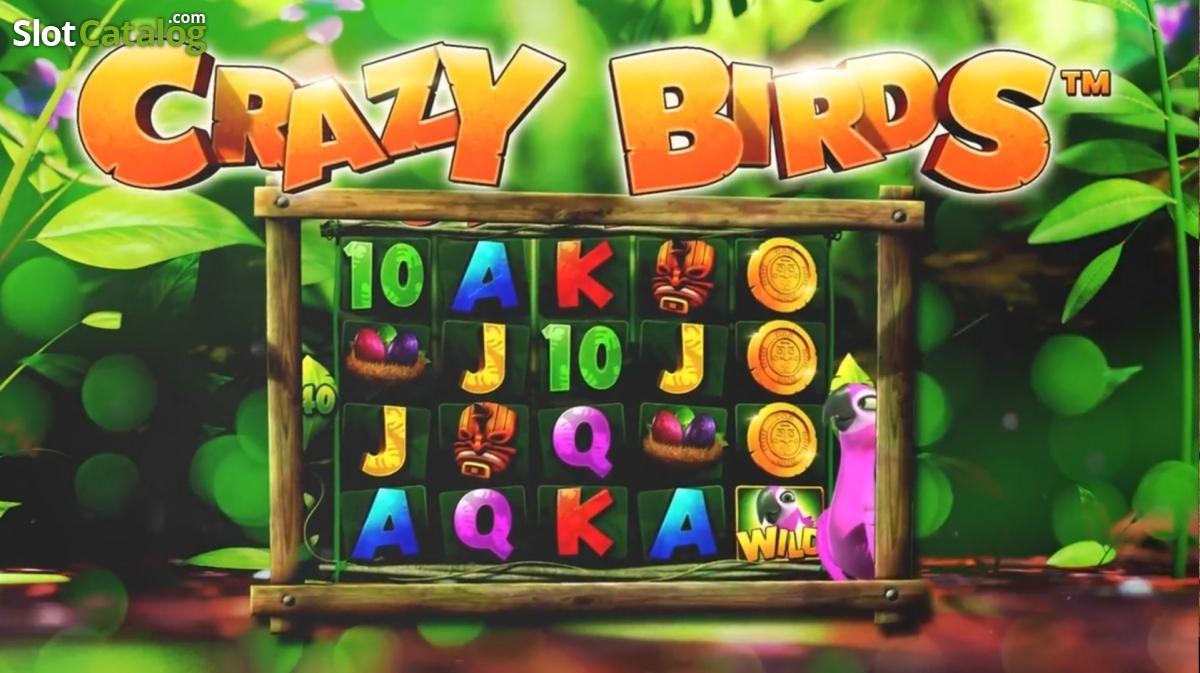tropica casino bonus codes 2019