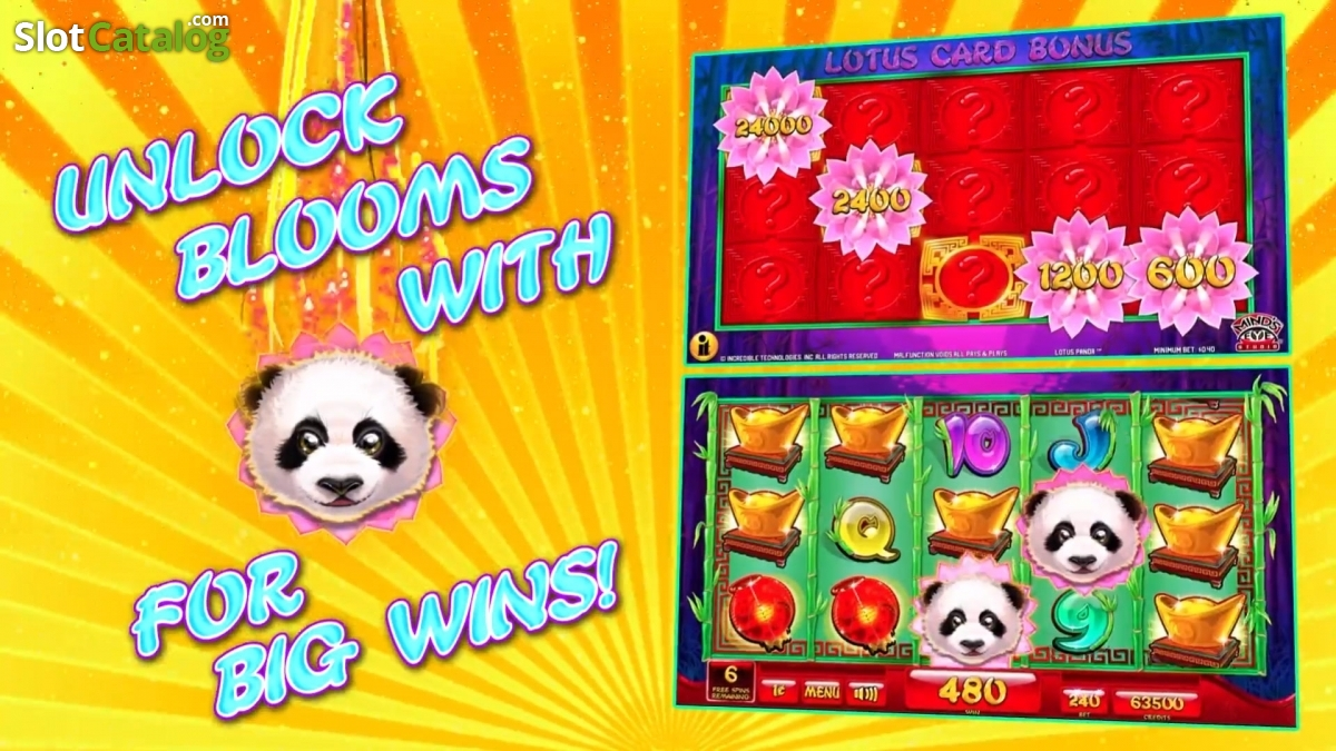 Lotus Panda Slot Review Bonus Codes Where To Play From Uk