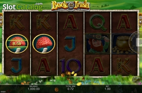 Win Screen 2. Book of the Irish (Video Slot from Inspired Gaming)