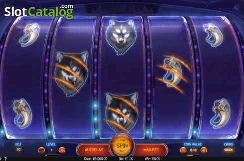 Reel Screen. Spinsane (Video Slot from NetEnt)