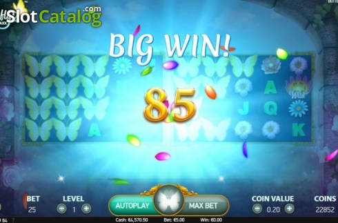 Big Win. Butterfly Staxx 2 (Video Slot from NetEnt)