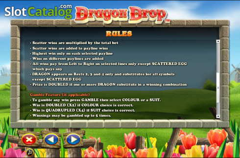 Paytable 4. Dragon Drop (Video Slot a partire dal NextGen)