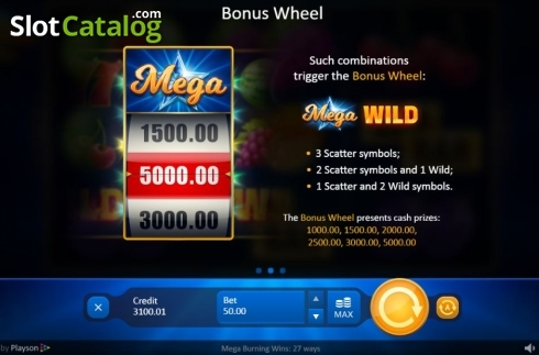 Feature. Mega Burning Wins 27 ways (Video Slot from Playson)