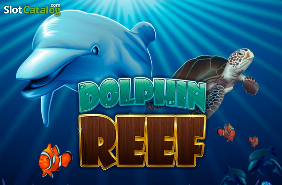 strim-kazino-dolphin-reef