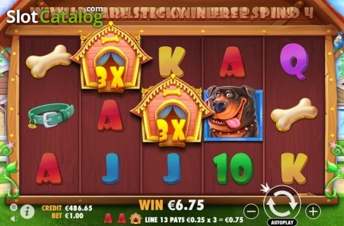 Win Screen. The Dog House (Video Slot from Pragmatic Play)
