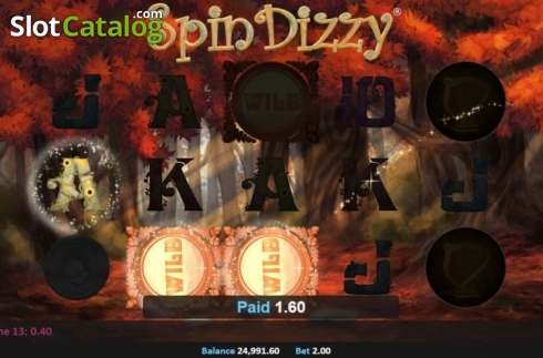 Win Screen. Spin Dizzy (Video Slot from Realistic)