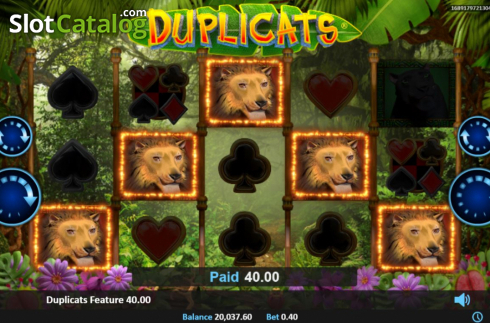 Feature 3. Duplicats (Video Slots from Realistic)
