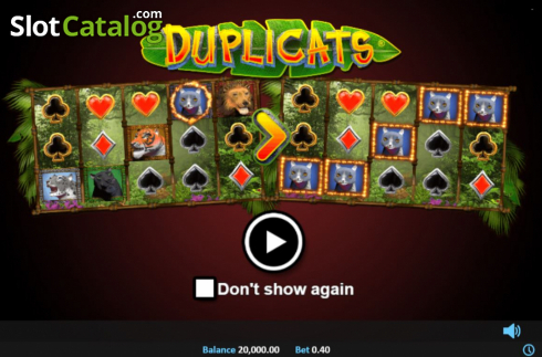 Start Screen. Duplicats (Video Slots from Realistic)