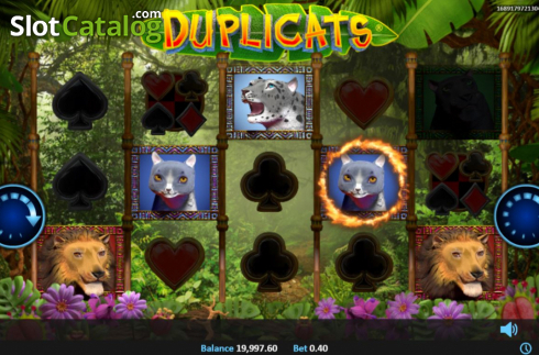 Feature 1. Duplicats (Video Slots from Realistic)