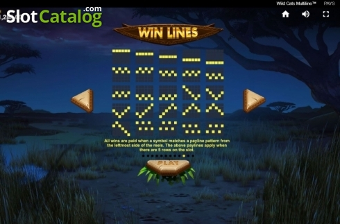 Paylines 4. Wild Cats Multiline (Video Slot from Red Tiger)
