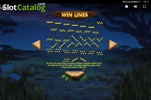 Paylines 5. Wild Cats Multiline (Video Slot from Red Tiger)
