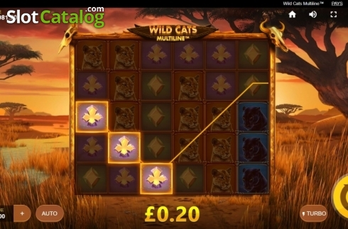 Win Screen 1. Wild Cats Multiline (Video Slot from Red Tiger)