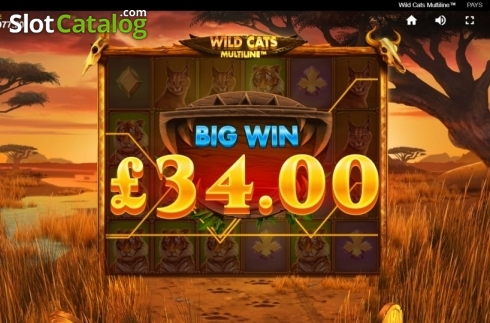 Big Win. Wild Cats Multiline (Video Slot from Red Tiger)