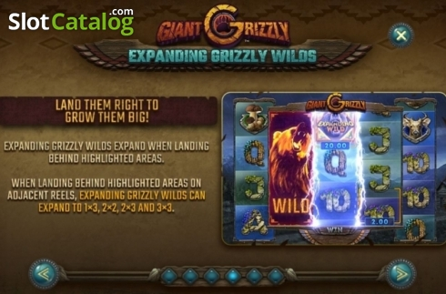 Features 2. Giant Grizzly (Video Slot from SUNFOX Games)