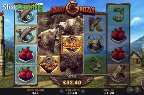 Feature 1. Giant Grizzly (Video Slot from SUNFOX Games)