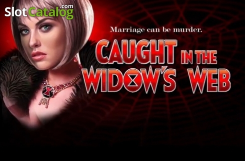 Caught-in-the-Widows-Web